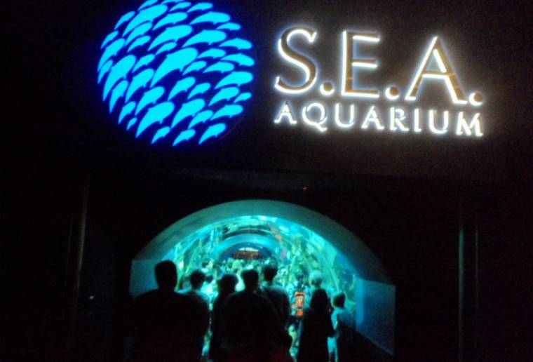 S.E.A.海洋馆 Sea Aquarium