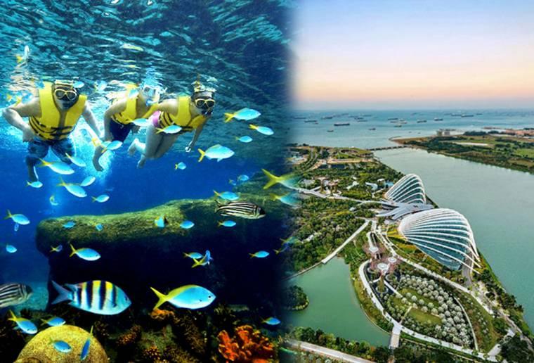 【套票】新加坡水上探险乐园套票合辑 Singapore Adventure Cove Waterpark Combo